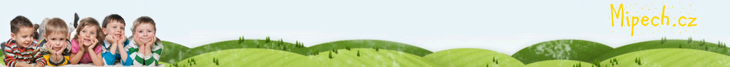 Dětská hřiště M&M MIPECH s.r.o. Dodáváme certifikovaná dětská hřiště dle ČSN EN 1176